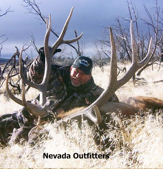 Big Game Hunts with Nevada Outfitters