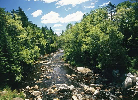 Beautiful Adirondack Mountains in New York