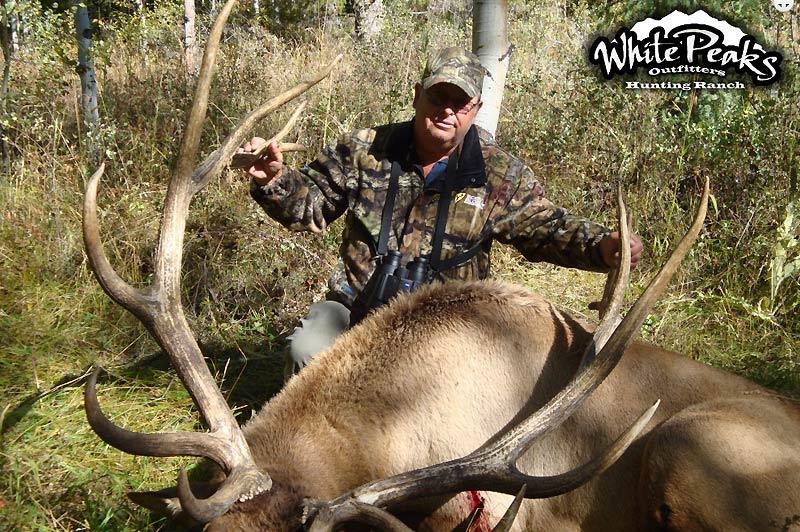 Trophy Utah Elk taken with White Peaks Outfitters