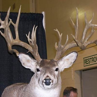 New York Hunting Lodge – Easton View Outfitters