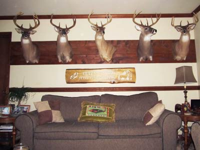 Cutawhiskie Creek Outfitters Hunting Lodge